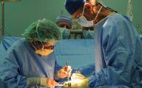 """La ONT trabaja para reforzar """"aún más"""" el modelo español de donaciones y trasplantes."""