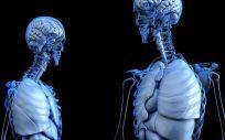 El cáncer de pulmón de células pequeñas supone el 14% de todos los tumores pulmonares y, en España, su prevalencia es del 20%.