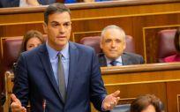 Pedro Sánchez, presidente del Gobierno, durante la sesión de control en el Congreso.