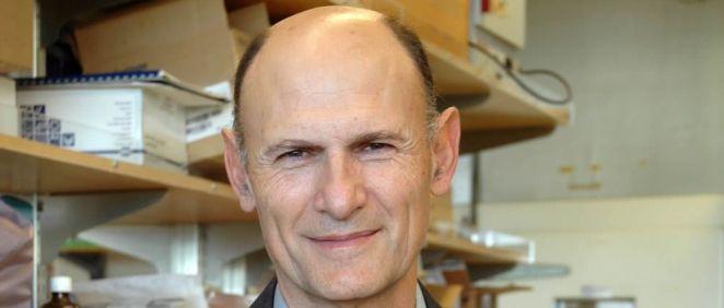 El científico Juan Carlos Izpisúa Belmonte