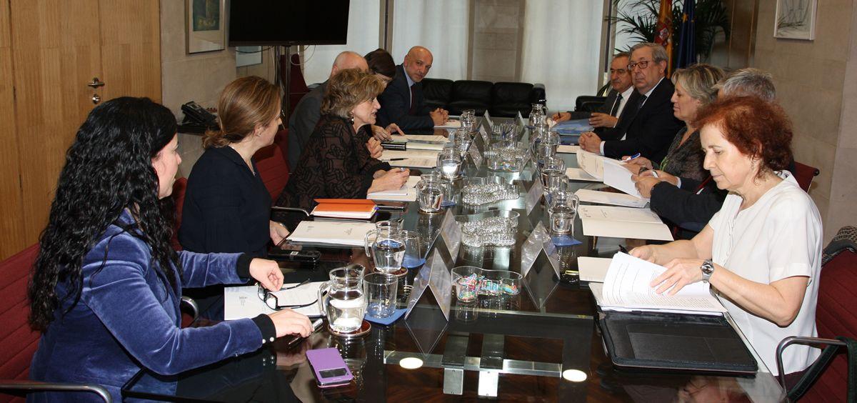 La ministra Carcedo, durante su reunión con representantes de sociedades científicas y de pacientes.