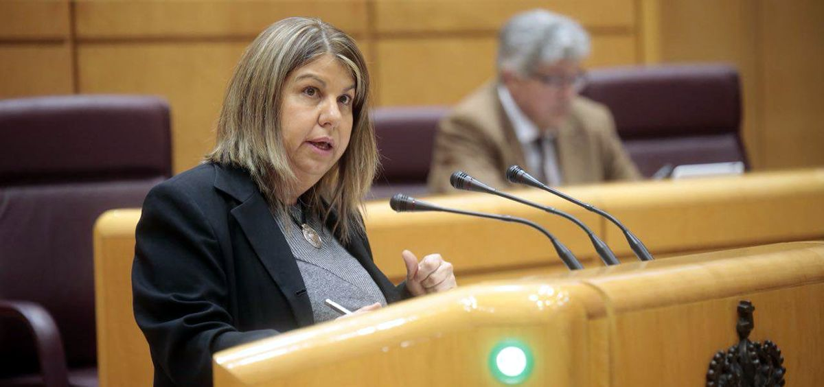 Kontxi Palencia, portavoz de Sanidad de Unidos Podemos en el Senado.
