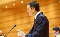 Pedro Sánchez, durante su intervención este martes en el Senado
