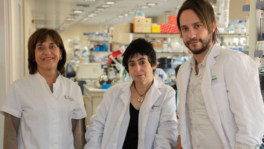 Investigadores Idibaps/ Ciberdem Anna Novials, Marcelina Parrizas y Carlos Castaño