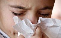 Los ácaros son uno de los principales inductores de reacciones alérgicas, ya que se trata del alérgeno de interior más importante y está presente todo el año