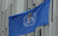 Bandera de la OMS