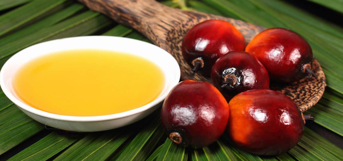 Se espera que la demanda de aceite de palma aumente a medida que los países vayan poniendo barreras administrativas a las grasas trans