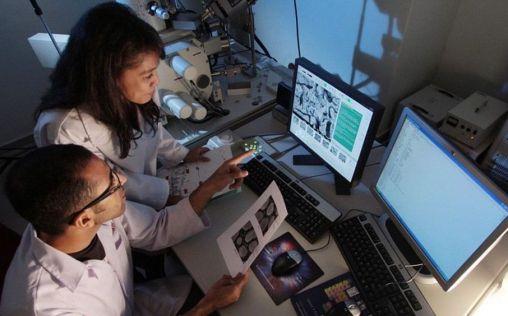 La inmunoterapia y las terapias dirigidas, protagonistas de la revolución del melanoma