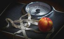 Las neuronas de la memoria, claves contra la obesidad