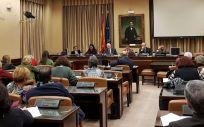 Comisión de Sanidad en el Congreso de los Diputados.