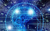Las pruebas sobre el alzhéimer se han realizado en animales y en tejidos cerebrales de pacientes fallecidos