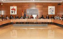 La ministra de Sanidad, María Luisa Carcedo, preside la reunión con las CC.AA. para presentar el nuevo catálogo de compra centralizada.