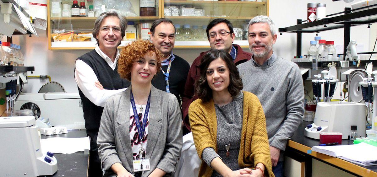 Grupo de investigadores del proyecto