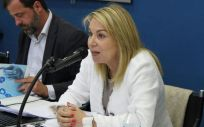 La presidenta de la Alianza de la Sanidad Privada Española (ASPE), Cristina Contel