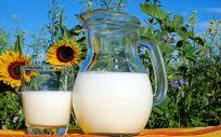 Los lácteos pueden ayudar a un envejecimiento saludable