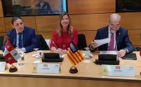 Patricia Gómez, consejera de Salud de Baleares, en el Consejo Interterritorial del SNS