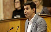 Sergio Romero, portavoz de Ciudadanos en el Parlamento de Andalucía.