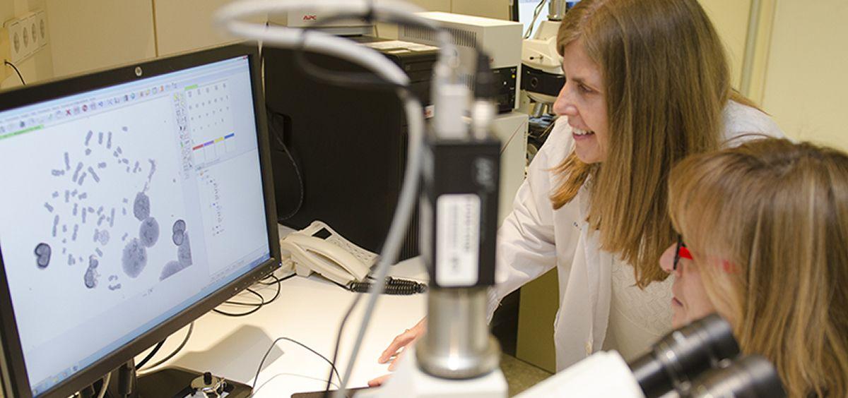 Mediante el análisis se puede visualizar la morfología de los cromosomas y establecer si hay alteraciones genéticas por radiación