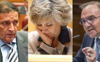 De izq. a der.: Antonio María Sáez Aguado, consejero de Sanidad de Castilla y León; María Luisa Carcedo, ministra de Sanidad, y José Manuel Baltar, consejero de Sanidad de Canarias.