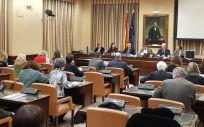 Imagen de la Comisión de Sanidad del Congreso de los Diputados (Foto: ConSalud.es)
