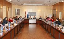 Reunión de la ministra de Sanidad, María Luisa Carcedo, con las comunidades autónomas.