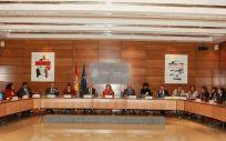 Carcedo, presidiendo su segunda Comisión de Recursos Humanos del SNS en el Ministerio de Sanidad