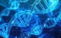 China estudia endurecer sus leyes sobre la edición genética