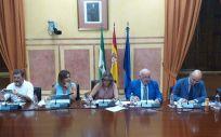 Jesús Aguirre, consejero de Salud de la Junta de Andalucía, presentando los presupuestos en la Comisión de Salud.